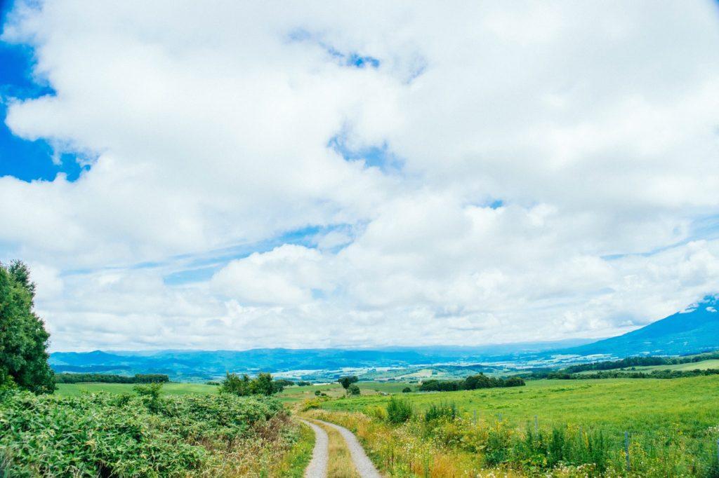 淡い空と道